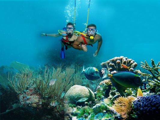 snorkel-xcaret